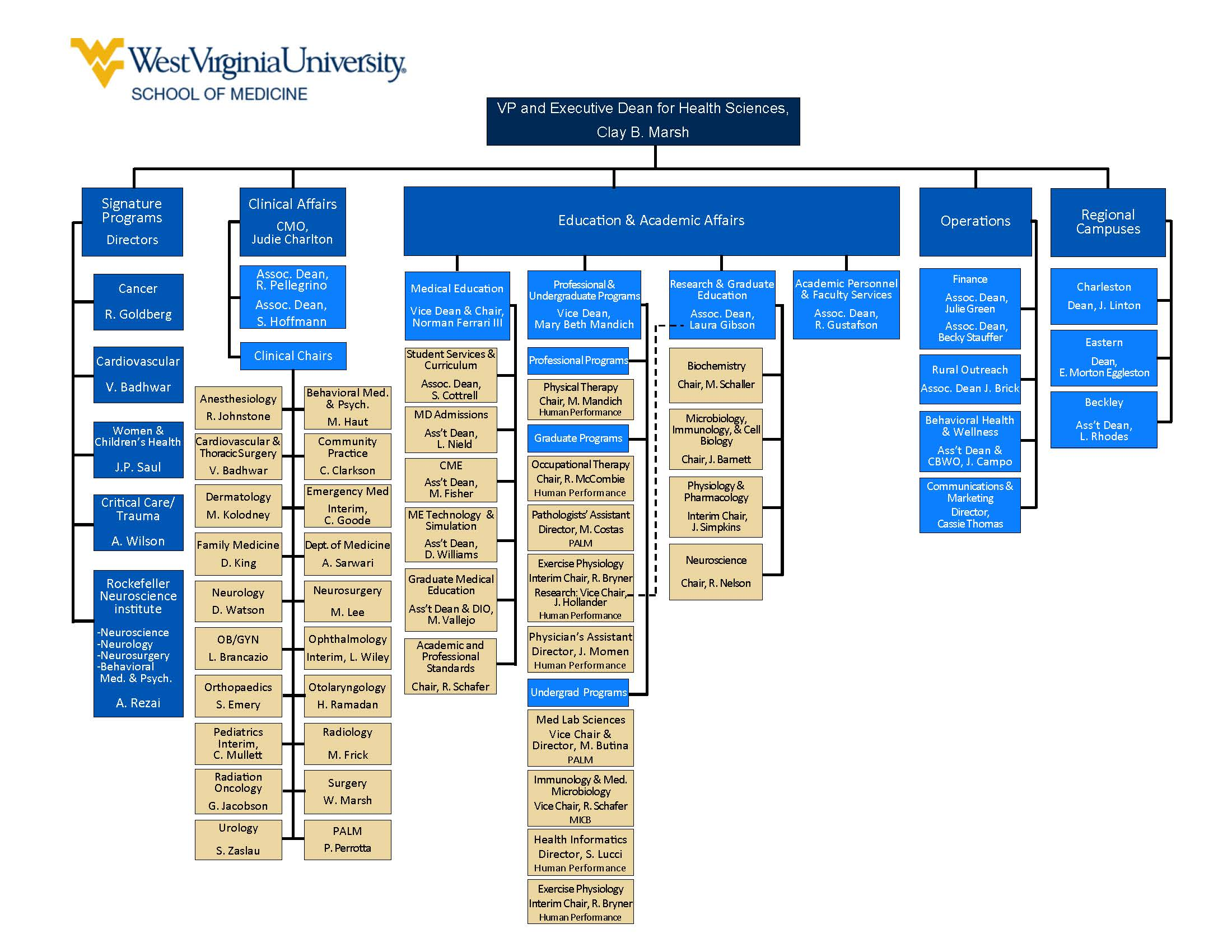 Organizational leadership chart for the School of Medicine