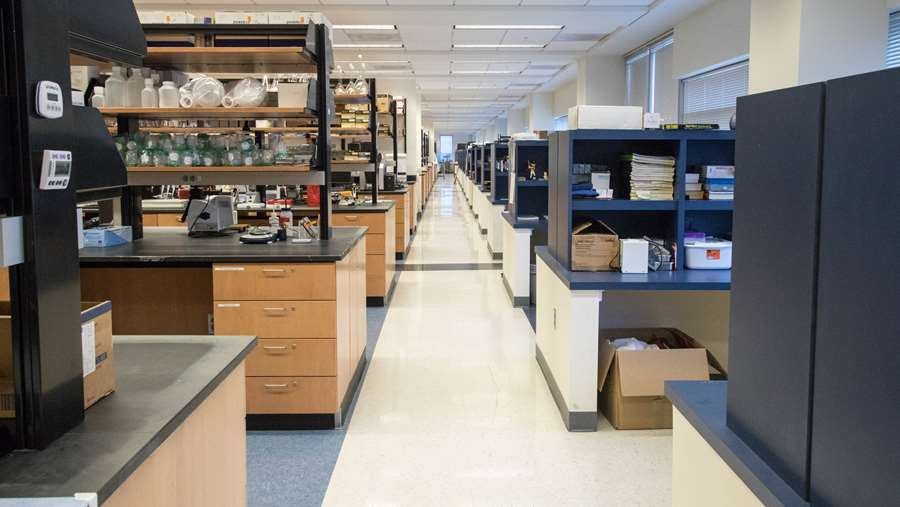 Open lab space in  Erma Byrd Biomedical Research Center