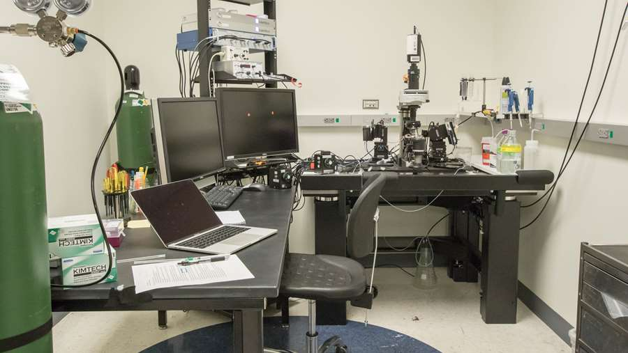 Microscope rig in Erma Byrd Biomedical Research Center