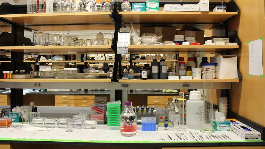 Lab supplies in Erma Byrd Biomedical Research Center