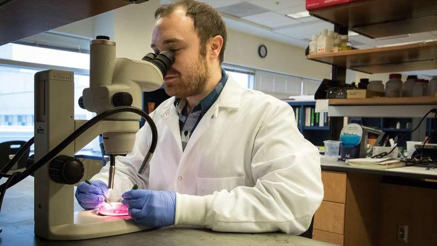 Neuroscience graduate student, James Scripter, working with a microscope