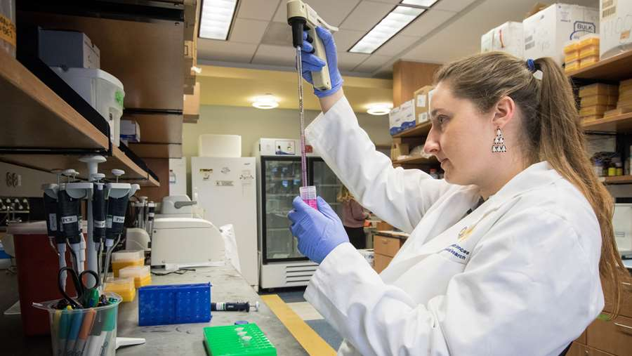 Neuroscience graduate student, Jessica Cunningham, working in the lab